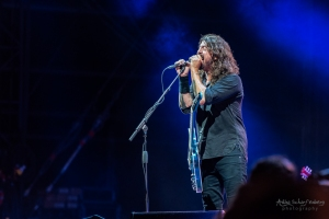 concert of Foo Fighters at Lollapalooza, Berlin (2017)