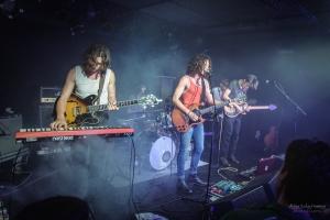 salamanda-fete-musique-musik-frieden-berlin-konzert (15)